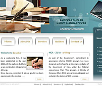 Web development for Chartered Accountants Firm